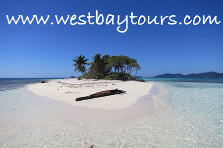 Roatan Excursions with West Bay Tours